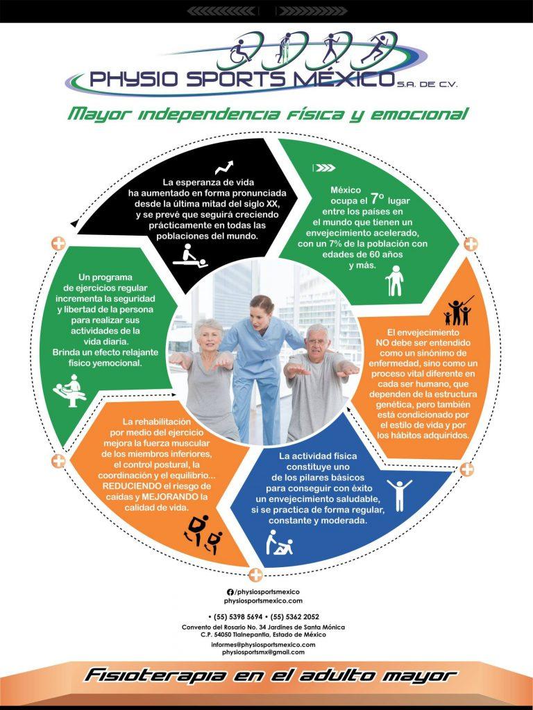 Infografía Sobre Fisioterapia En El Adulto Physio Sports